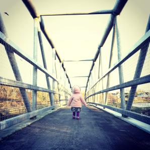 Ballyannan Woods walkway, Midleton