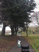 St Dominic's Park, Droghed