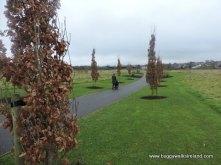 Navan Park