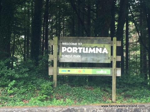 Portumna Forest Park 1