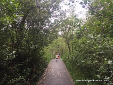 Portumna Forest Park